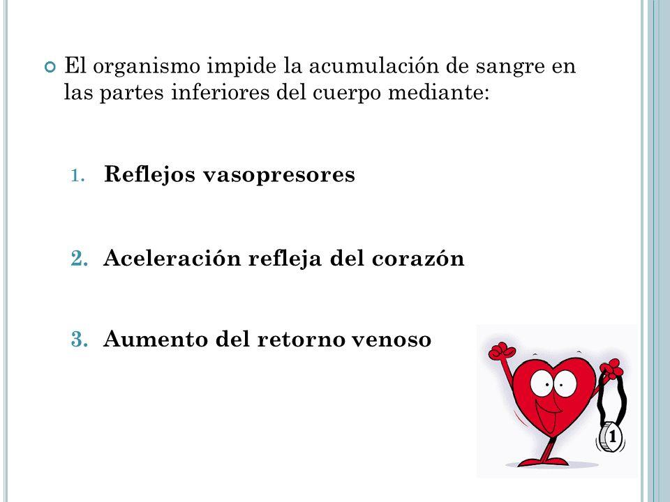 El organismo impide la acumulación de sangre en las partes inferiores del cuerpo mediante: