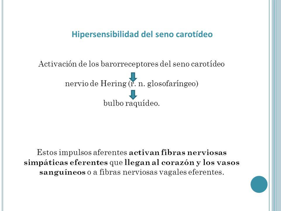 Hipersensibilidad del seno carotídeo