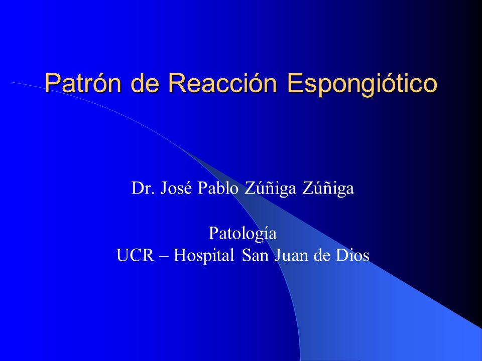Patrón de Reacción Espongiótico