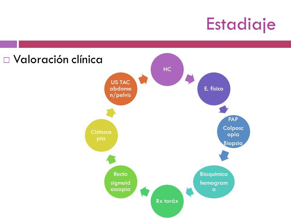 Estadiaje Valoración clínica HC E. físico PAP Colposcopía Biopsia
