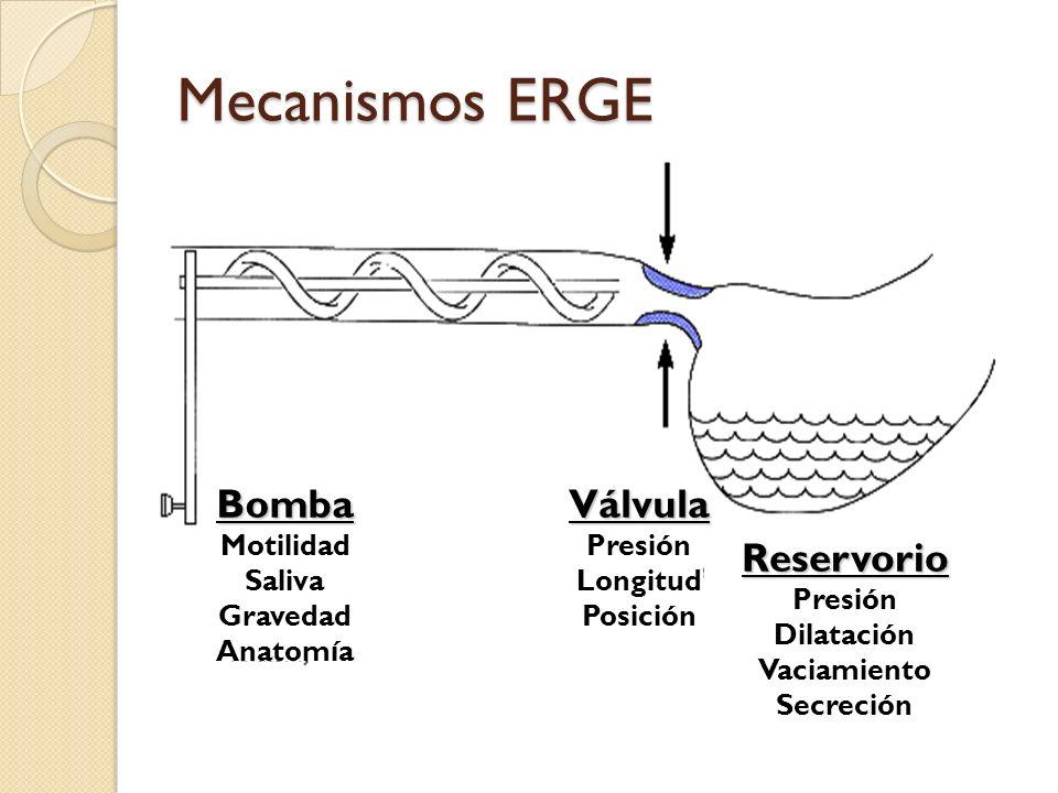 Mecanismos ERGE Válvula Bomba Reservorio Presión Motilidad Longitud