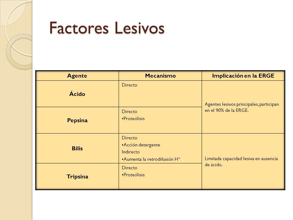 Factores Lesivos Agente Mecanismo Implicación en la ERGE Ácido Pepsina