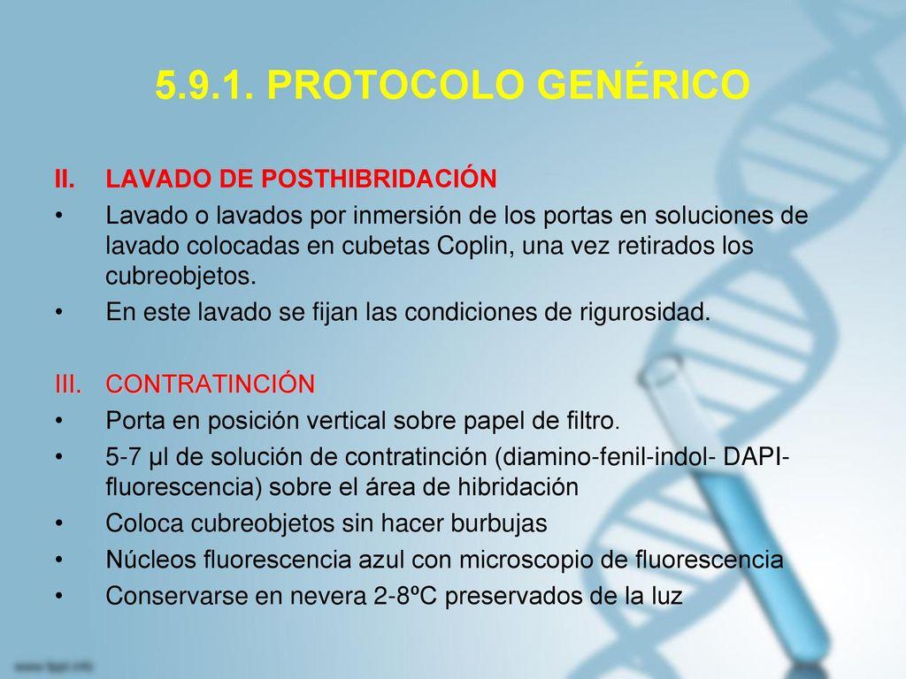 5.9.1. PROTOCOLO GENÉRICO LAVADO DE POSTHIBRIDACIÓN