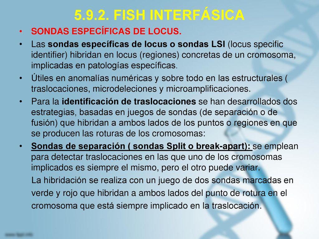 5.9.2. FISH INTERFÁSICA SONDAS ESPECÍFICAS DE LOCUS.