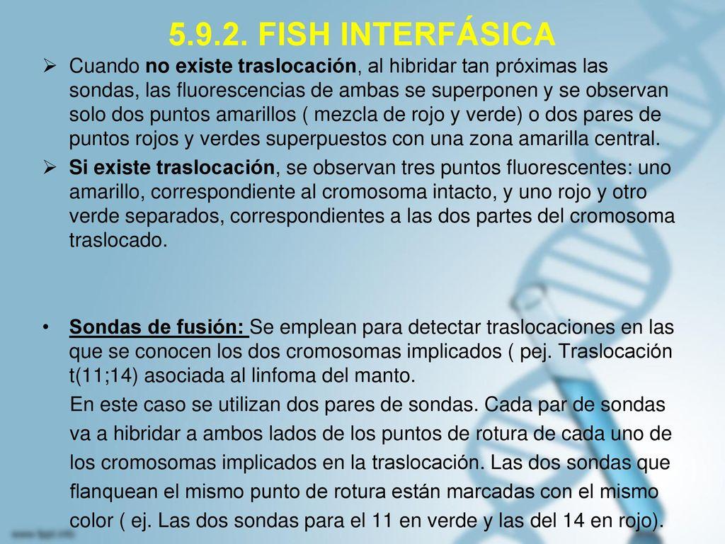 5.9.2. FISH INTERFÁSICA