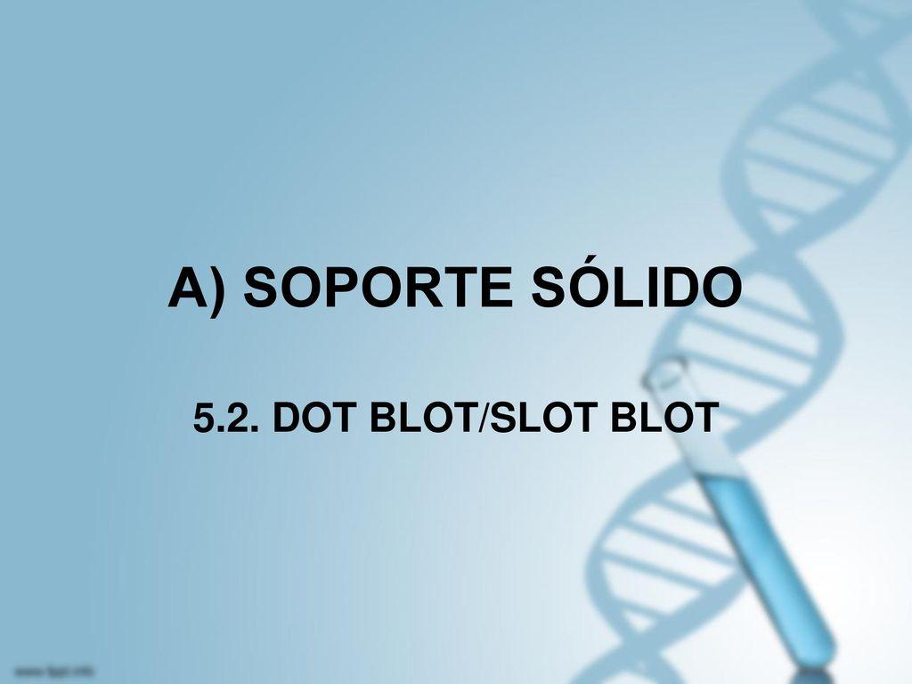 A) SOPORTE SÓLIDO 5.2. DOT BLOT/SLOT BLOT