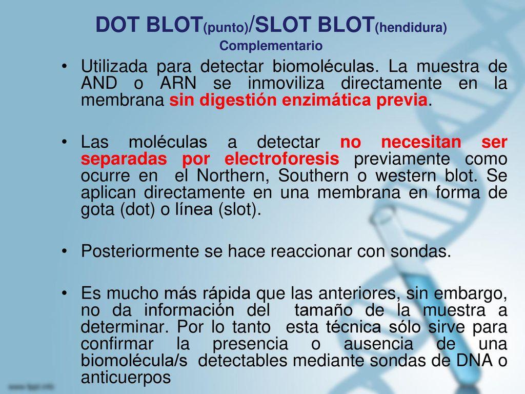 DOT BLOT(punto)/SLOT BLOT(hendidura) Complementario