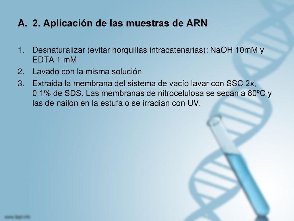 2. Aplicación de las muestras de ARN