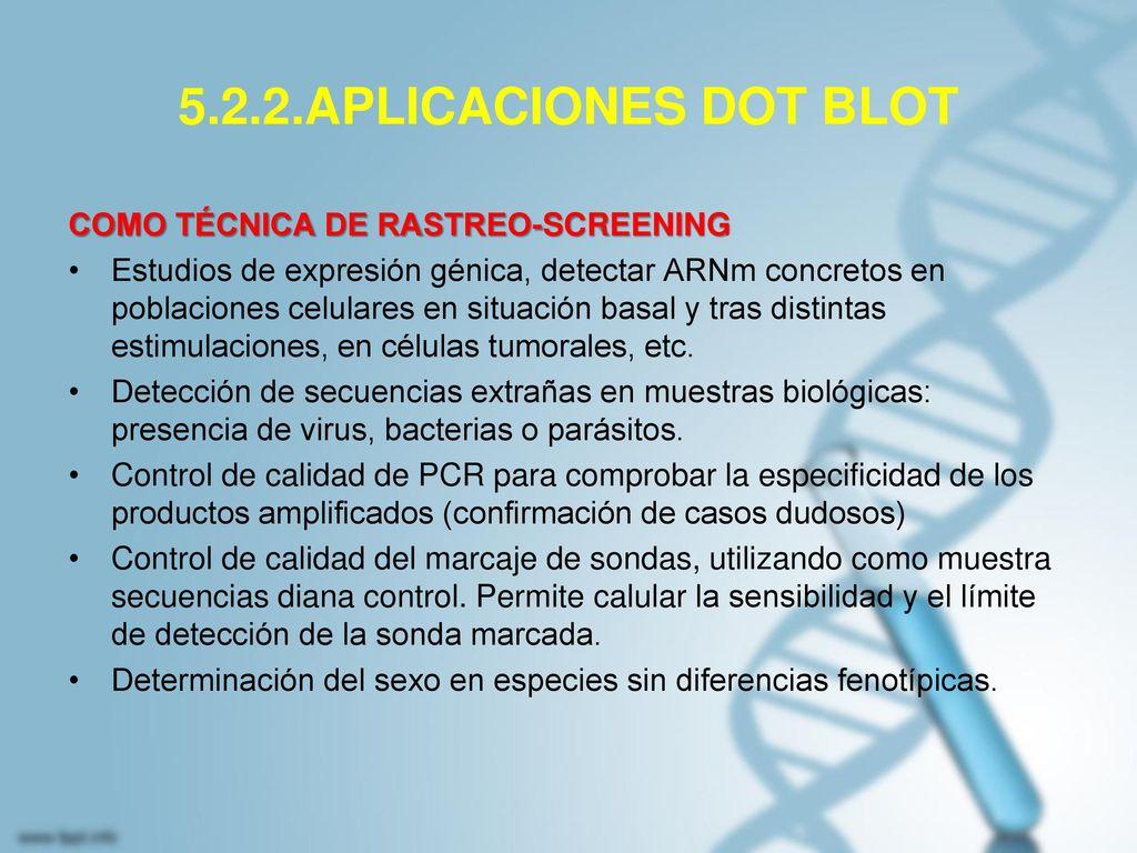 5.2.2.APLICACIONES DOT BLOT COMO TÉCNICA DE RASTREO-SCREENING