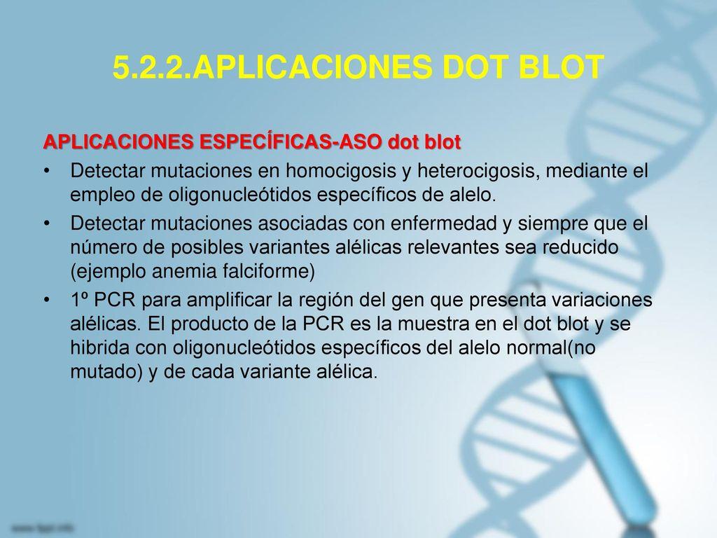5.2.2.APLICACIONES DOT BLOT APLICACIONES ESPECÍFICAS-ASO dot blot