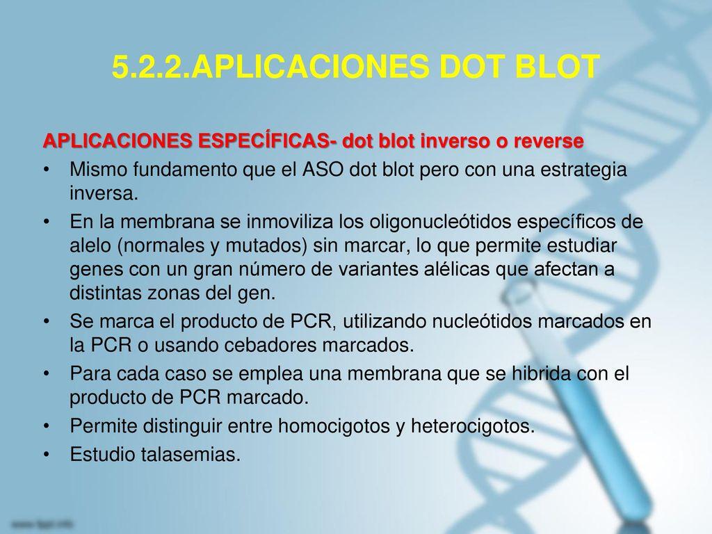 5.2.2.APLICACIONES DOT BLOT APLICACIONES ESPECÍFICAS- dot blot inverso o reverse.