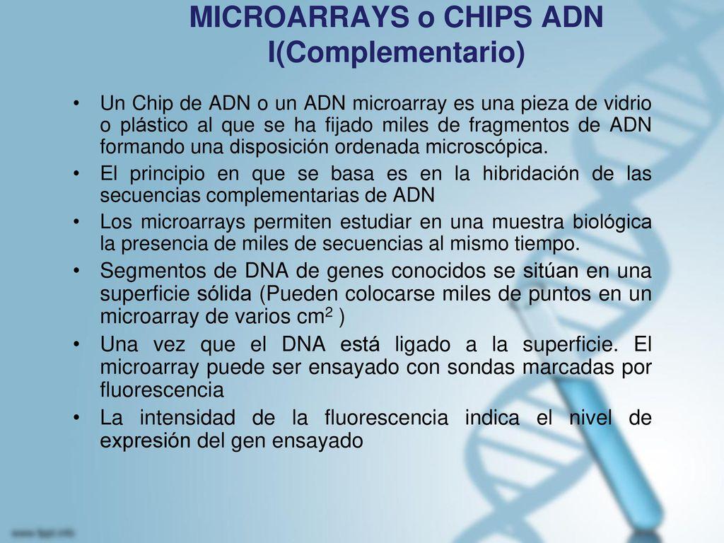 MICROARRAYS o CHIPS ADN I(Complementario)