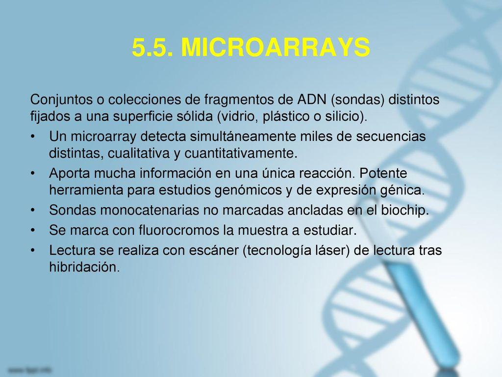 5.5. MICROARRAYS Conjuntos o colecciones de fragmentos de ADN (sondas) distintos fijados a una superficie sólida (vidrio, plástico o silicio).