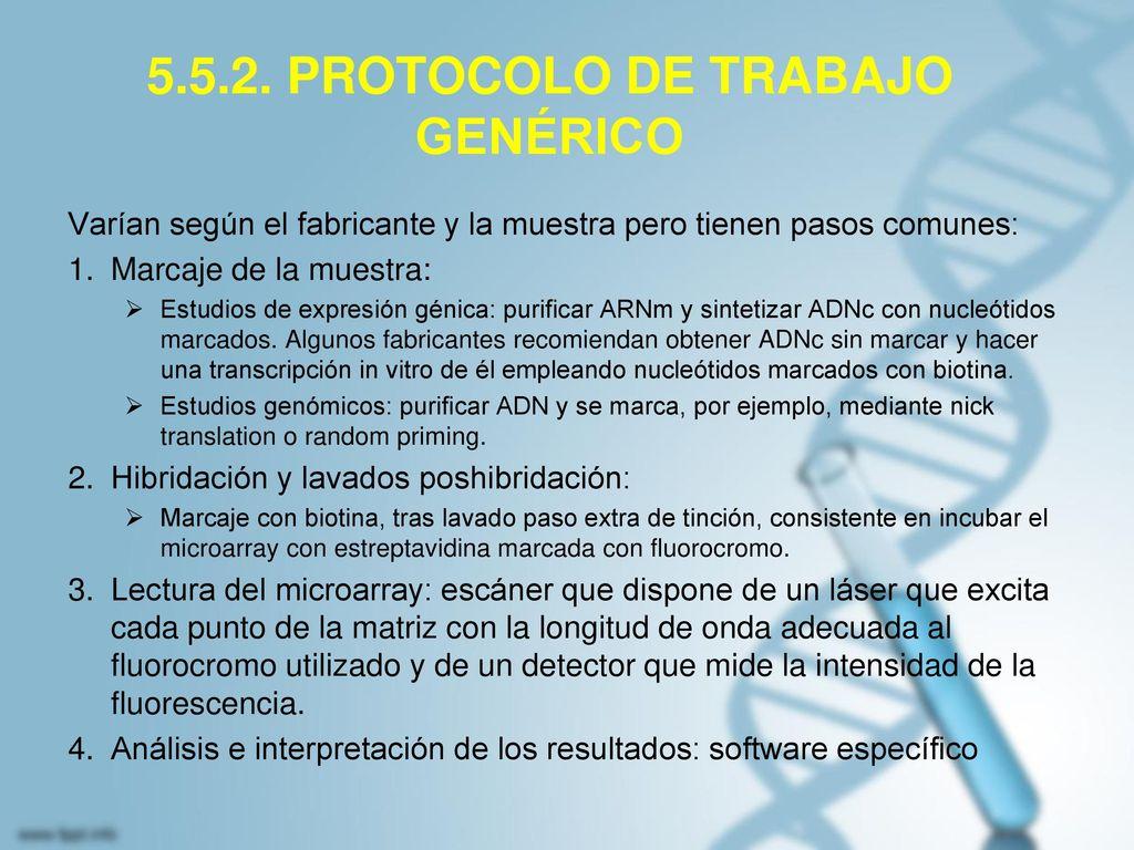 5.5.2. PROTOCOLO DE TRABAJO GENÉRICO