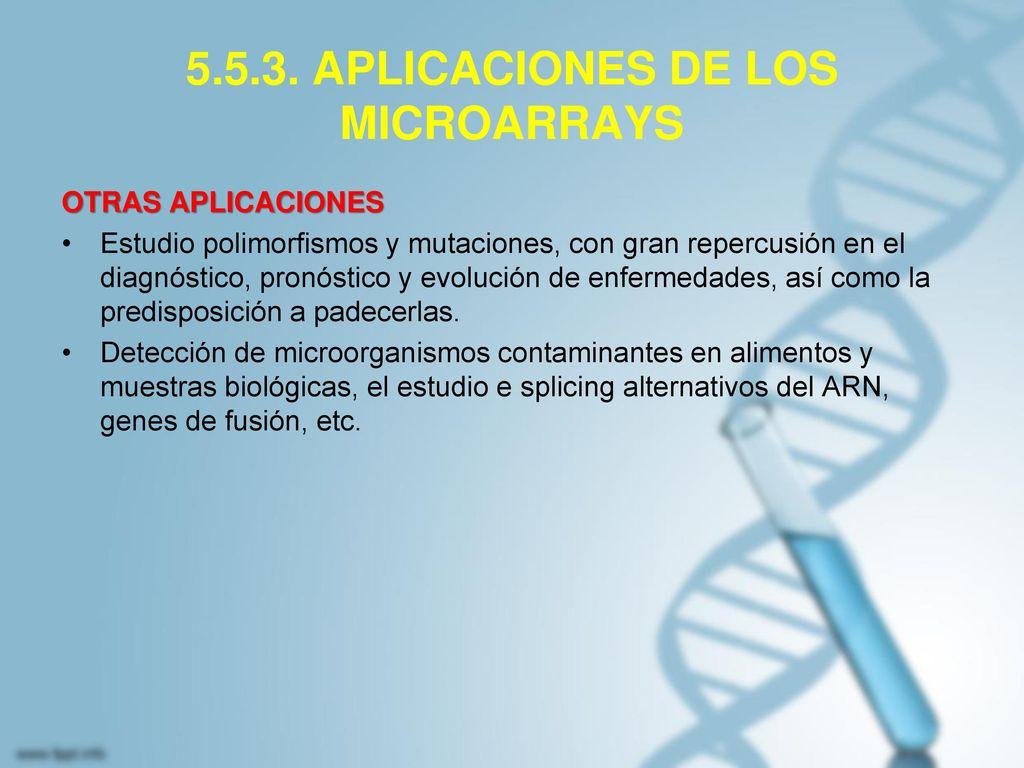 5.5.3. APLICACIONES DE LOS MICROARRAYS