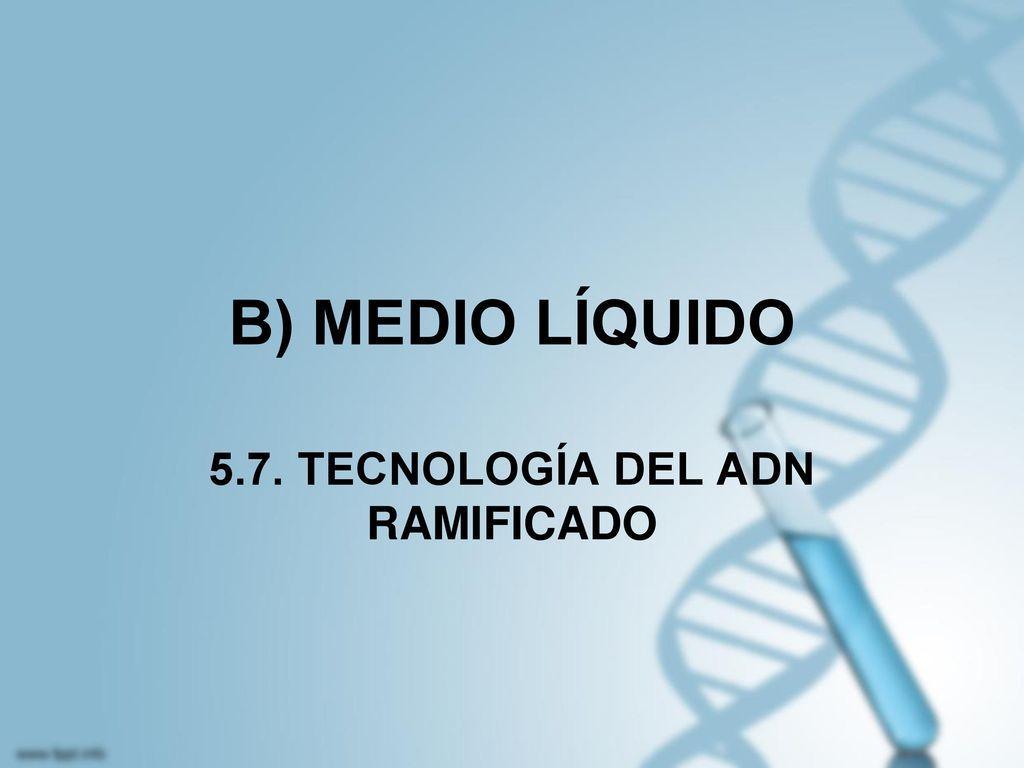 5.7. TECNOLOGÍA DEL ADN RAMIFICADO