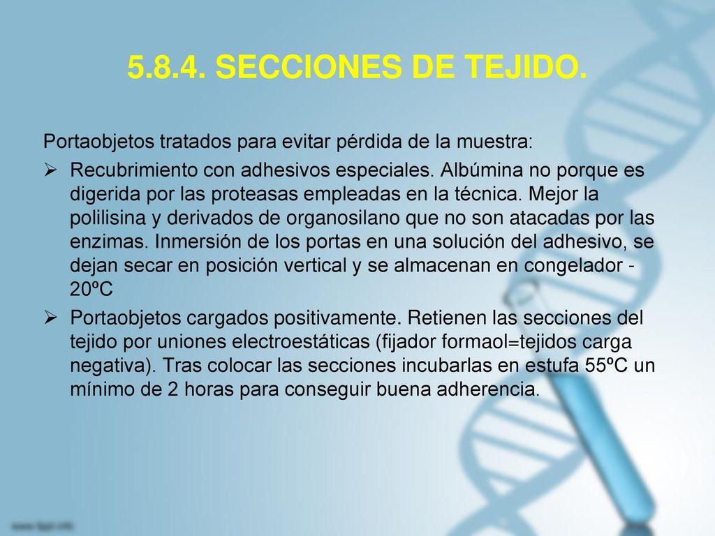 5.8.4. SECCIONES DE TEJIDO. Portaobjetos tratados para evitar pérdida de la muestra: