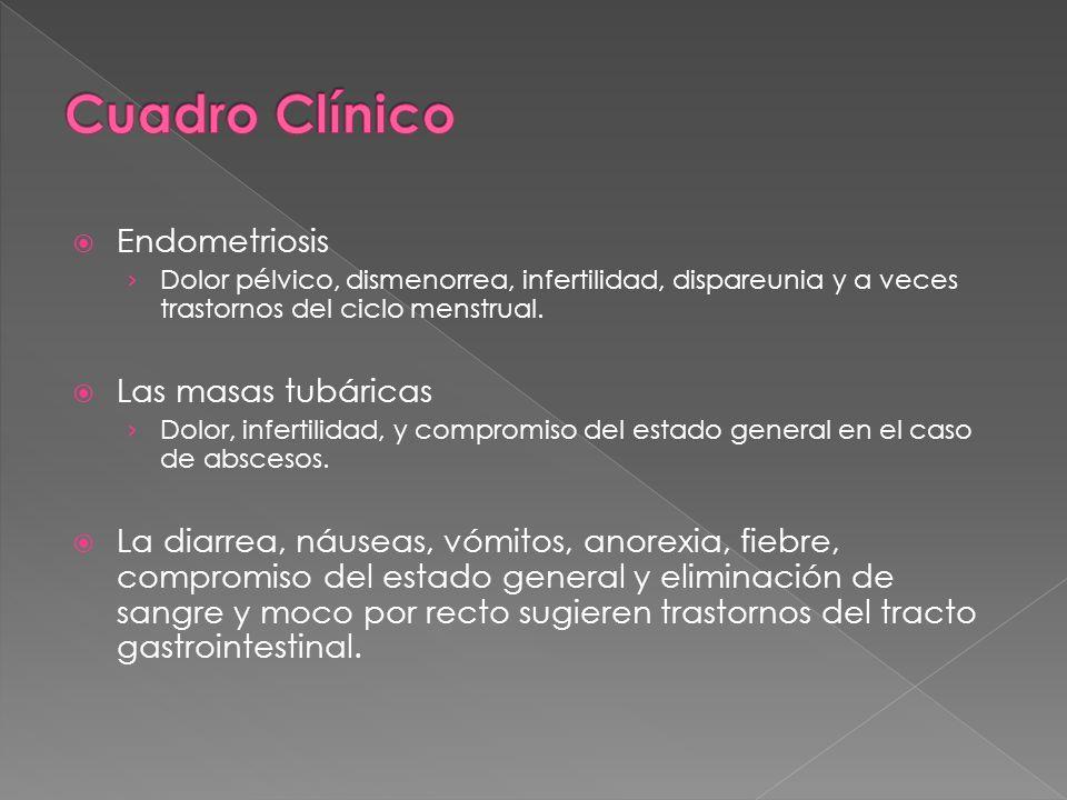 Cuadro Clínico Endometriosis Las masas tubáricas