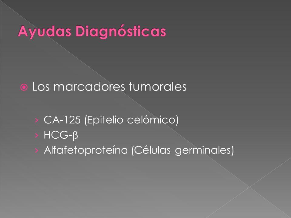 Ayudas Diagnósticas Los marcadores tumorales