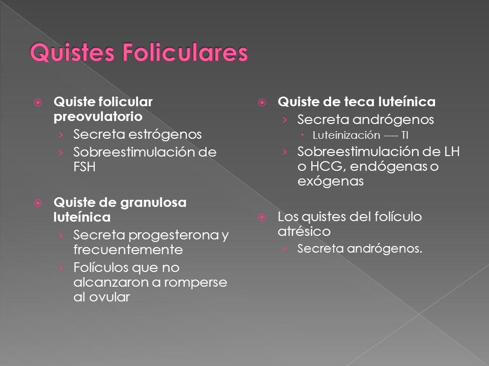 Quistes Foliculares Quiste folicular preovulatorio Secreta estrógenos