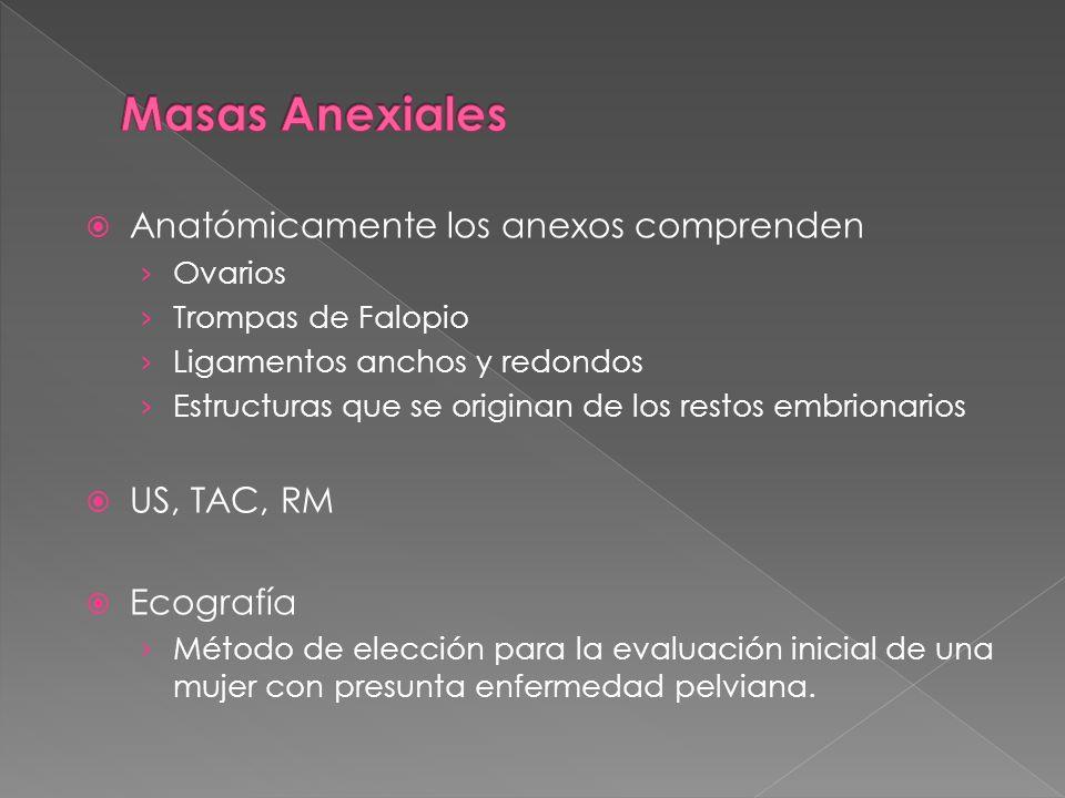 Masas Anexiales Anatómicamente los anexos comprenden US, TAC, RM