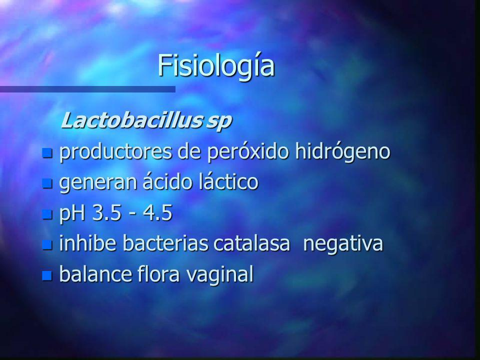 Fisiología Lactobacillus sp productores de peróxido hidrógeno