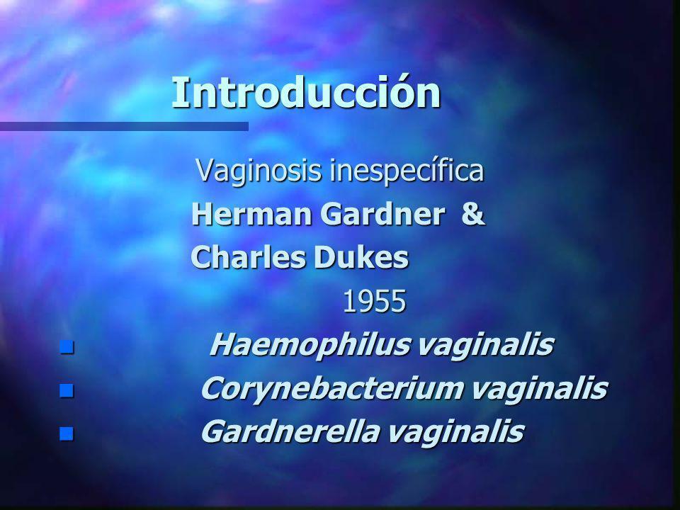 Vaginosis inespecífica