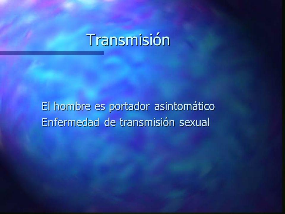 Transmisión El hombre es portador asintomático