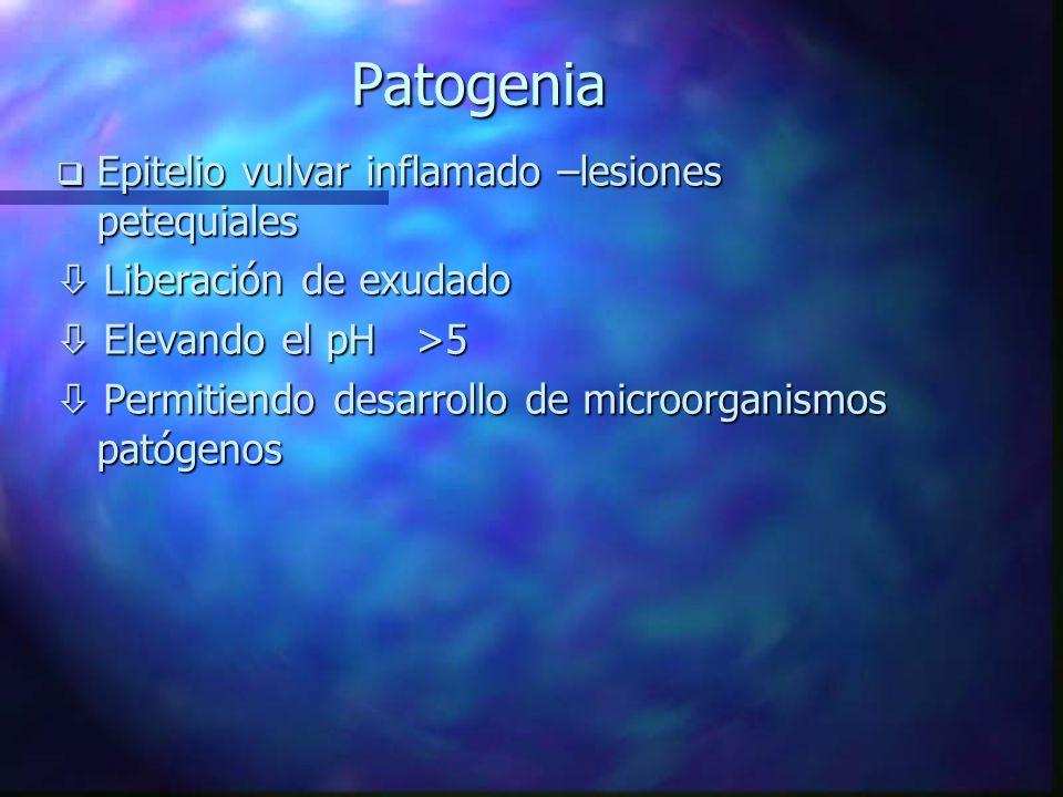 Patogenia Epitelio vulvar inflamado –lesiones petequiales