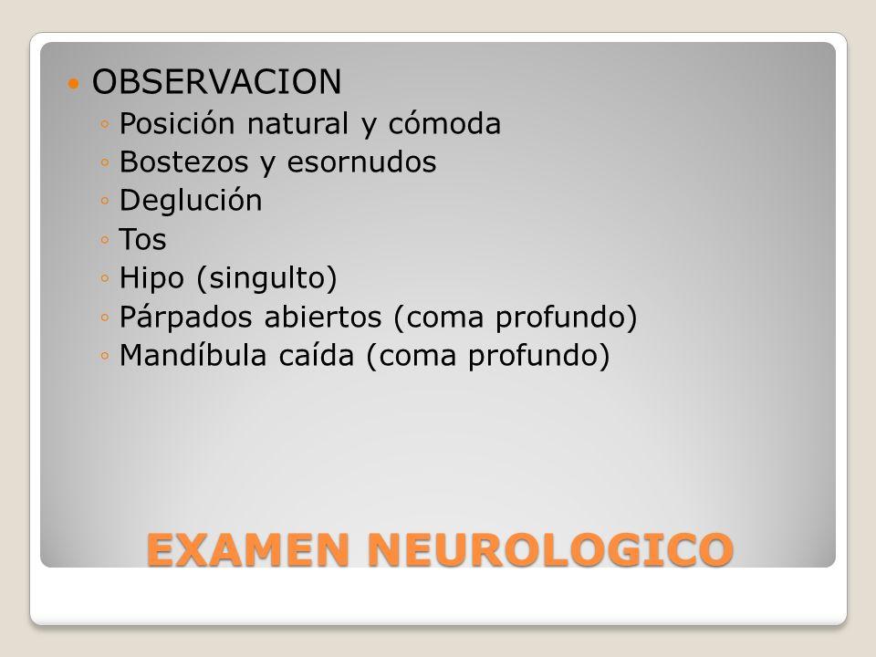 EXAMEN NEUROLOGICO OBSERVACION Posición natural y cómoda