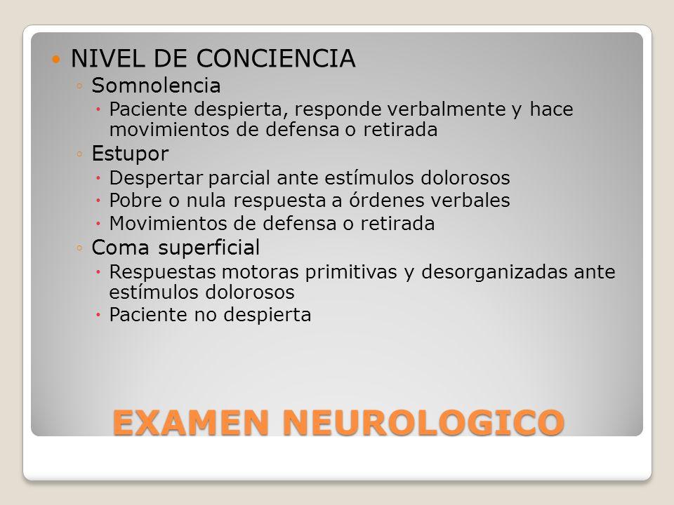 EXAMEN NEUROLOGICO NIVEL DE CONCIENCIA Somnolencia Estupor