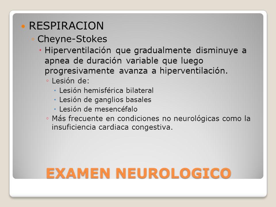 EXAMEN NEUROLOGICO RESPIRACION Cheyne-Stokes