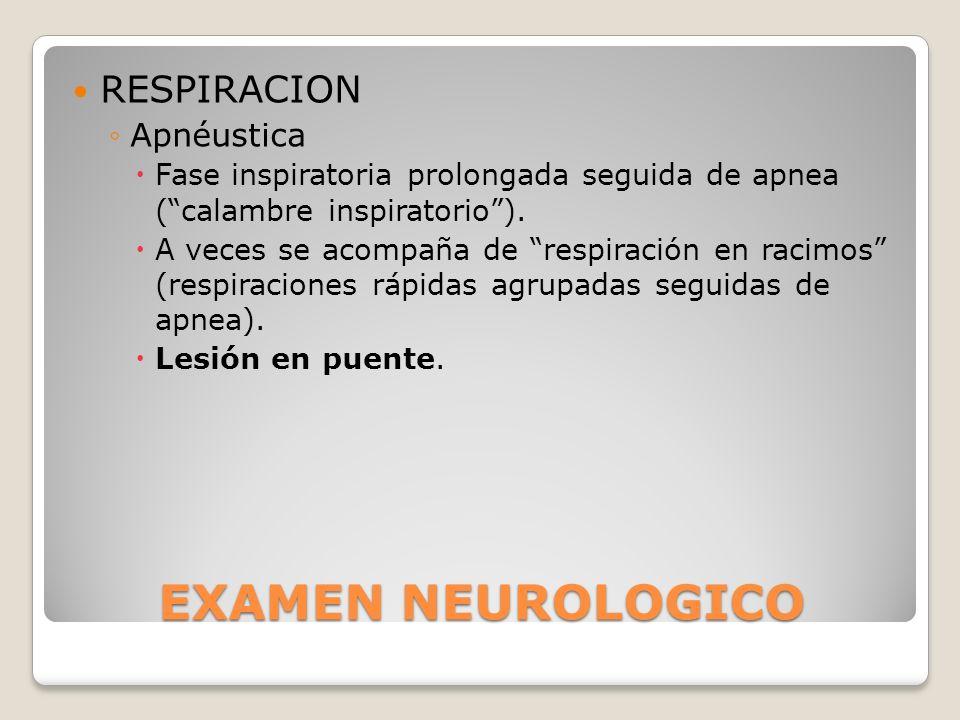 EXAMEN NEUROLOGICO RESPIRACION Apnéustica