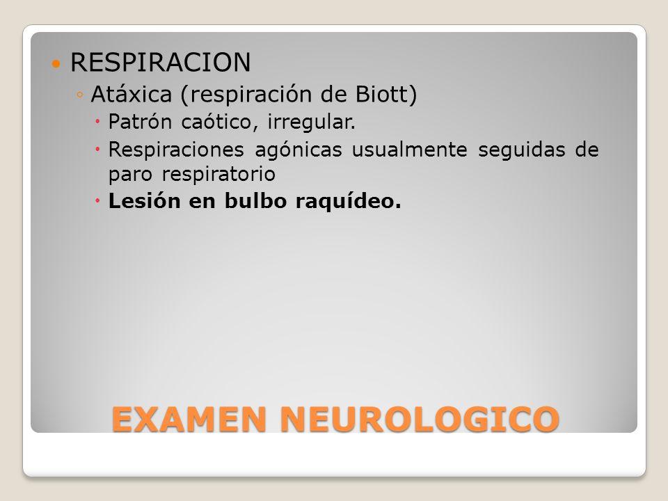 EXAMEN NEUROLOGICO RESPIRACION Atáxica (respiración de Biott)