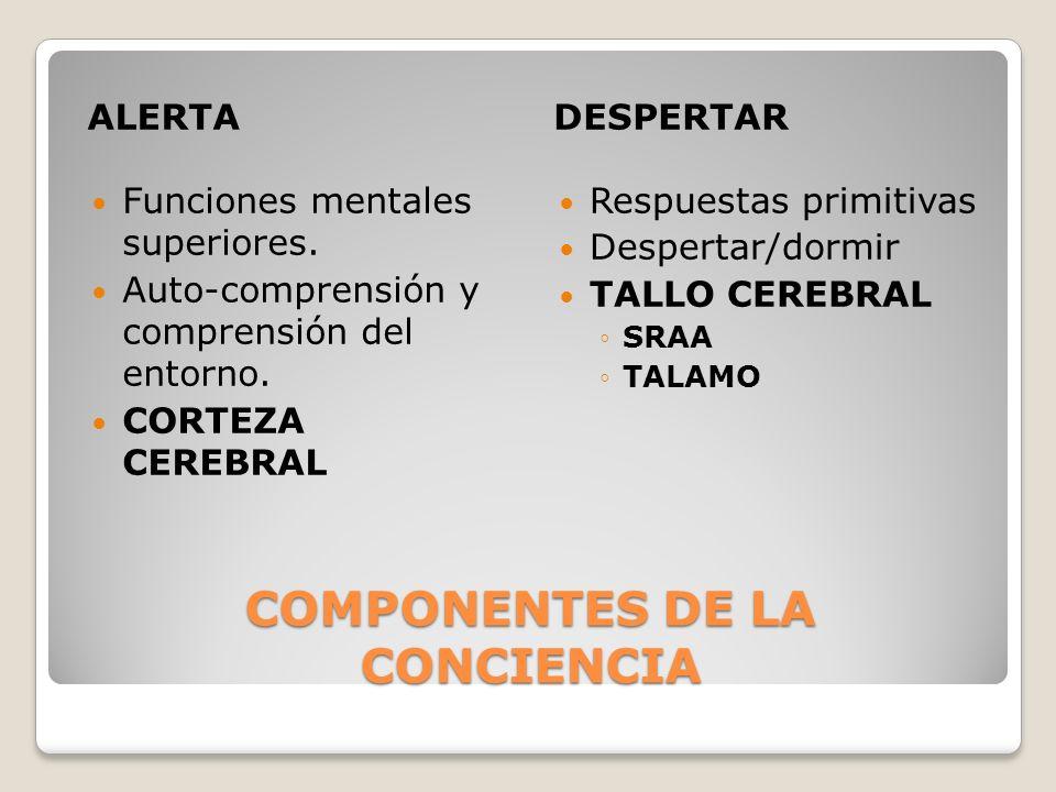 COMPONENTES DE LA CONCIENCIA
