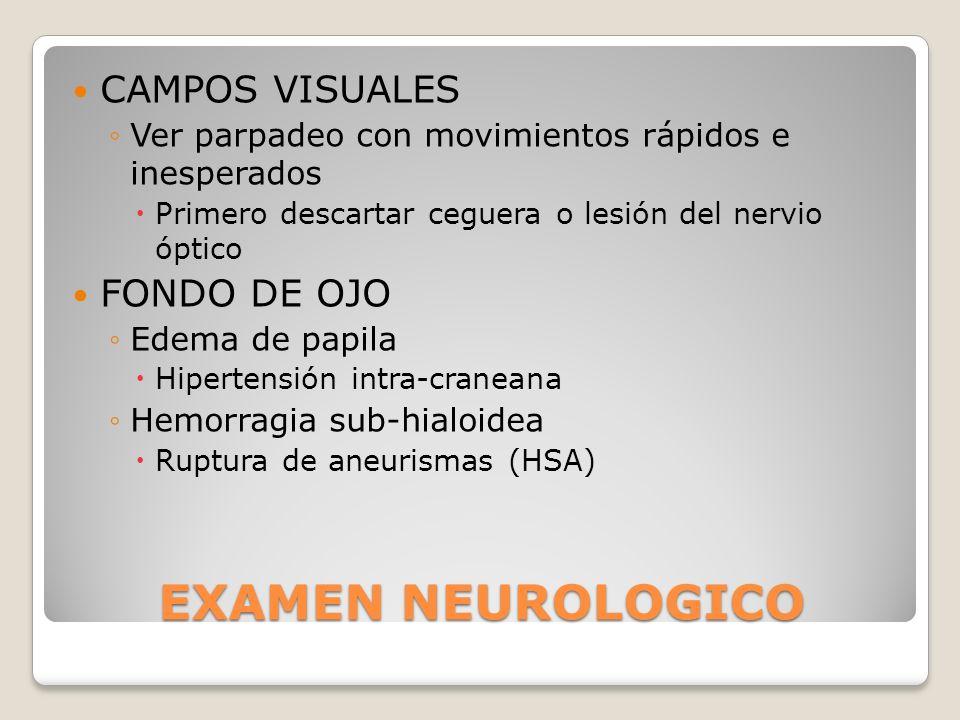 EXAMEN NEUROLOGICO CAMPOS VISUALES FONDO DE OJO