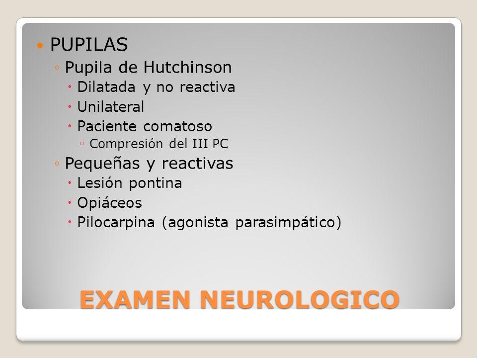 EXAMEN NEUROLOGICO PUPILAS Pupila de Hutchinson Pequeñas y reactivas