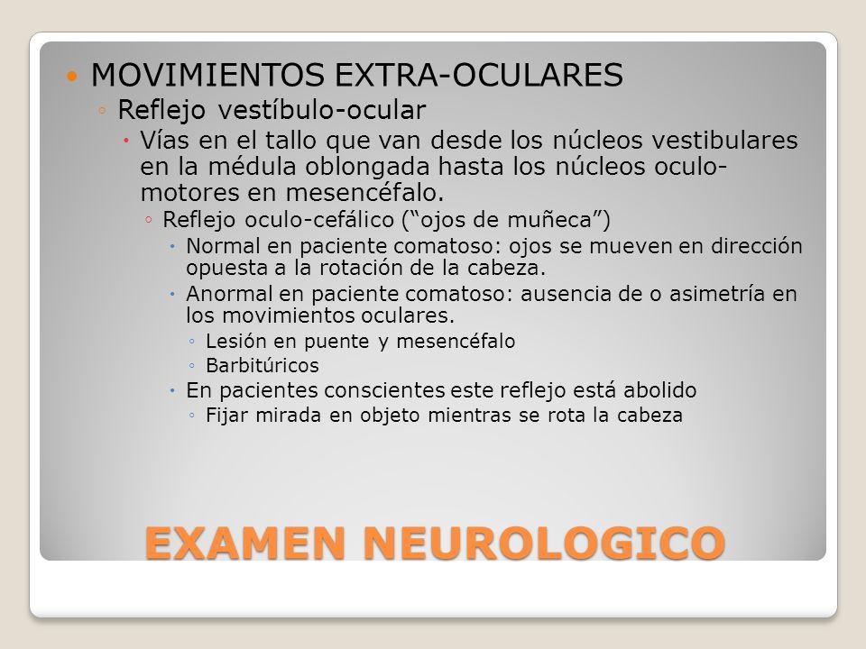 EXAMEN NEUROLOGICO MOVIMIENTOS EXTRA-OCULARES Reflejo vestíbulo-ocular