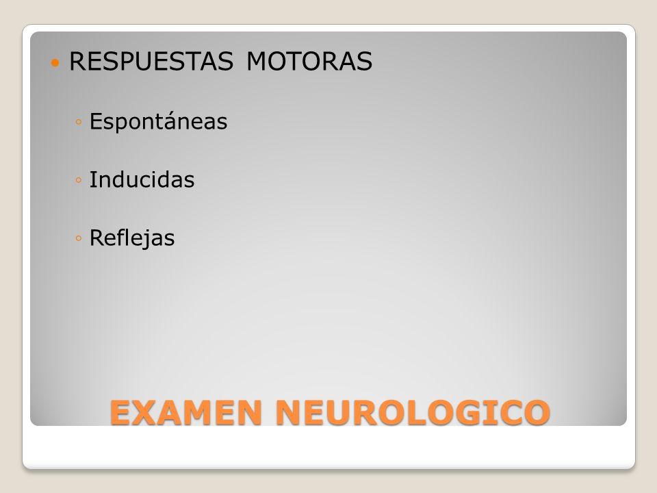 RESPUESTAS MOTORAS Espontáneas Inducidas Reflejas EXAMEN NEUROLOGICO