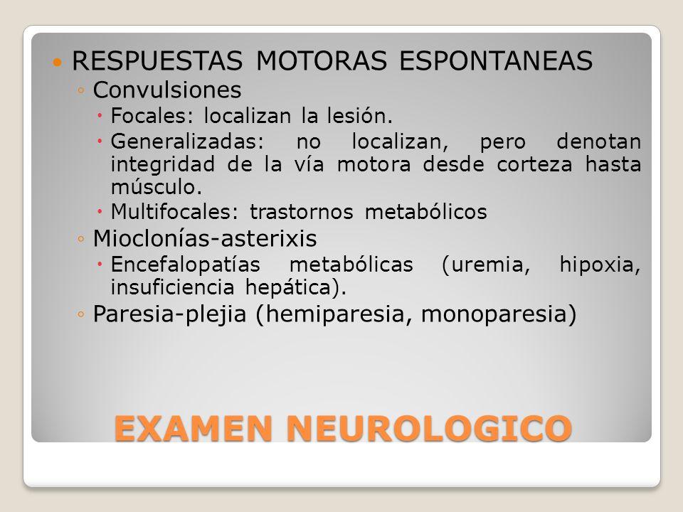 EXAMEN NEUROLOGICO RESPUESTAS MOTORAS ESPONTANEAS Convulsiones