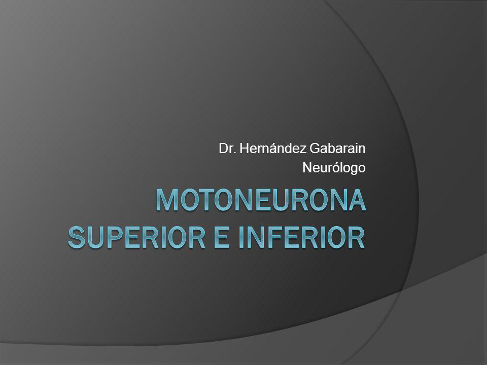 Motoneurona superior e inferior