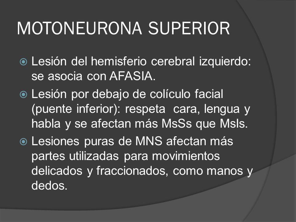 MOTONEURONA SUPERIORLesión del hemisferio cerebral izquierdo: se asocia con AFASIA.