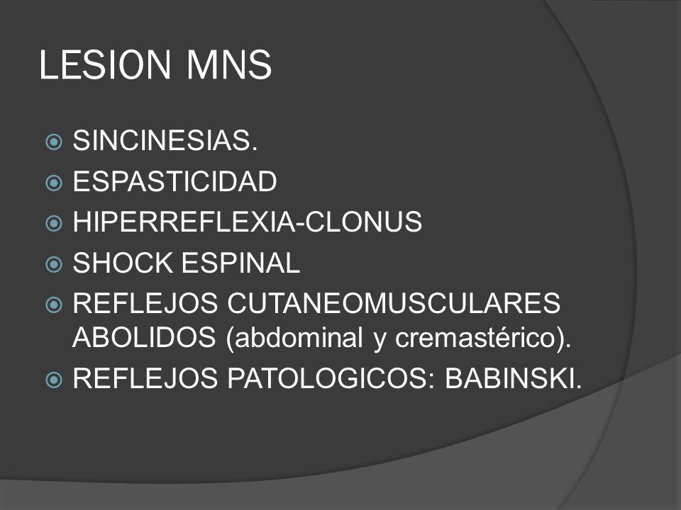 LESION MNS SINCINESIAS. ESPASTICIDAD HIPERREFLEXIA-CLONUS
