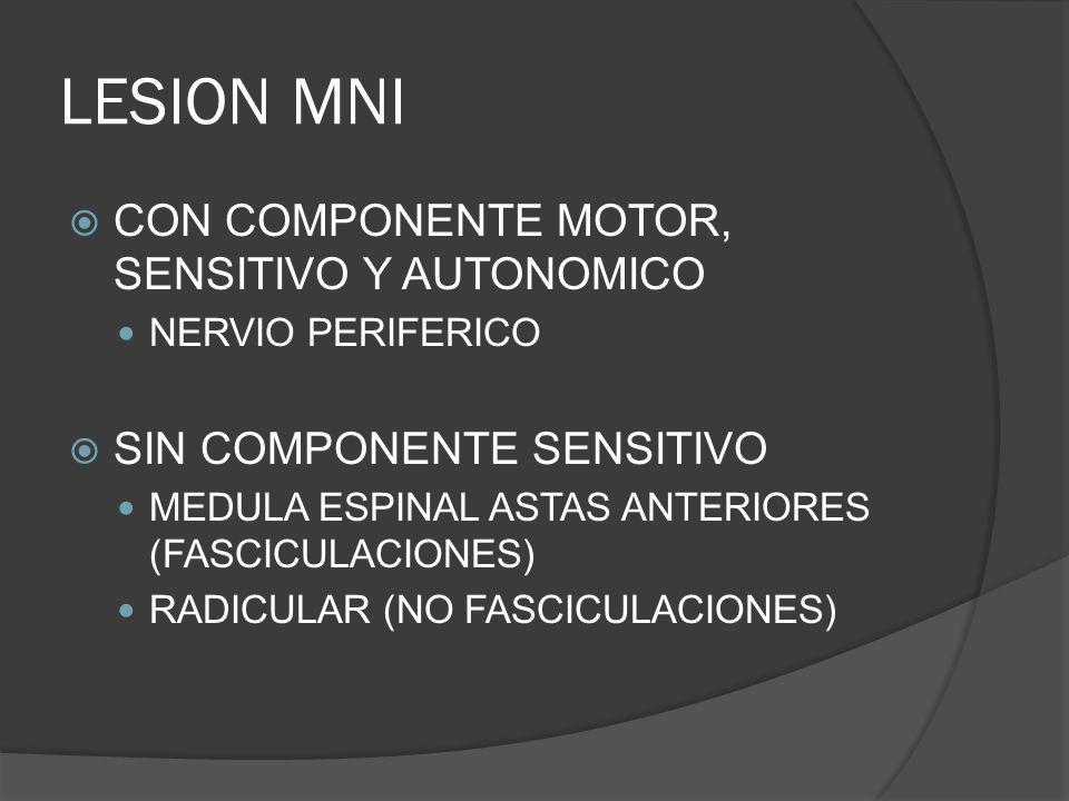 LESION MNI CON COMPONENTE MOTOR, SENSITIVO Y AUTONOMICO