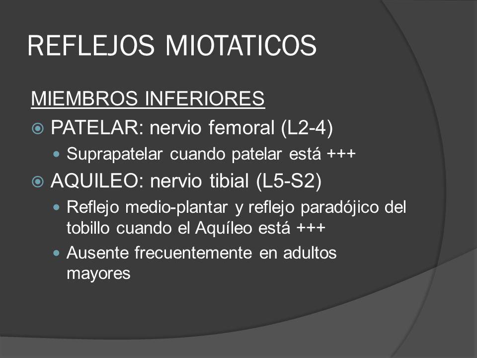 REFLEJOS MIOTATICOS MIEMBROS INFERIORES PATELAR: nervio femoral (L2-4)