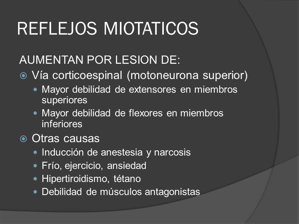 REFLEJOS MIOTATICOS AUMENTAN POR LESION DE: