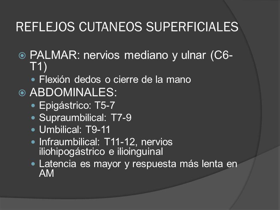 REFLEJOS CUTANEOS SUPERFICIALES