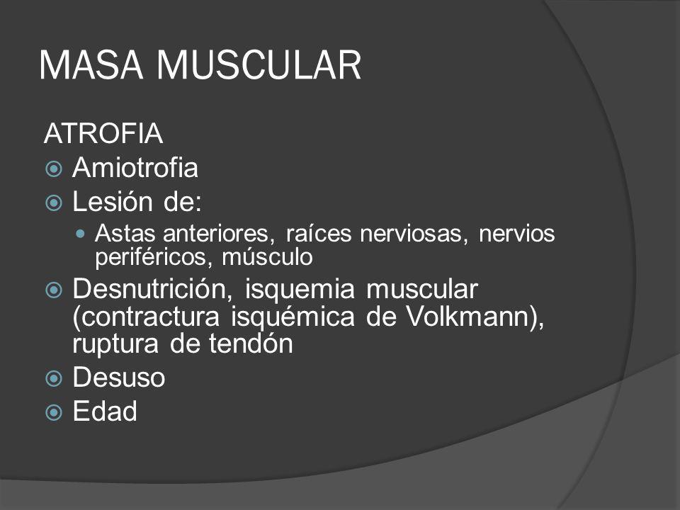 MASA MUSCULAR ATROFIA Amiotrofia Lesión de: