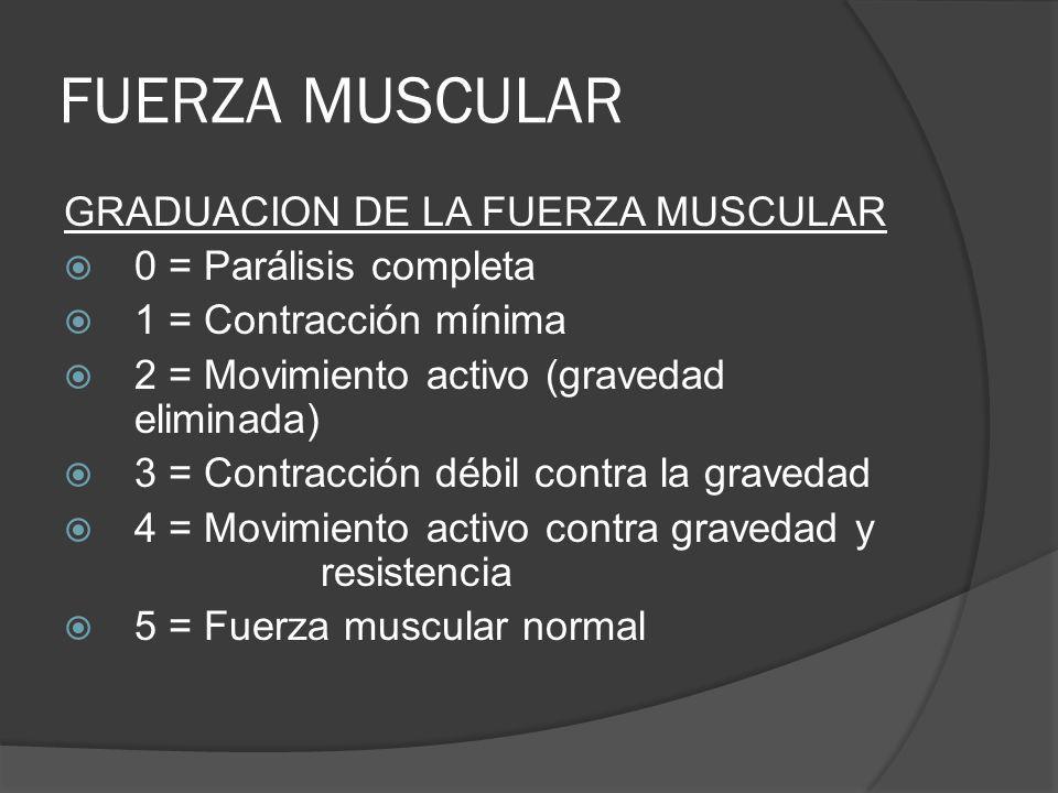 FUERZA MUSCULAR GRADUACION DE LA FUERZA MUSCULAR