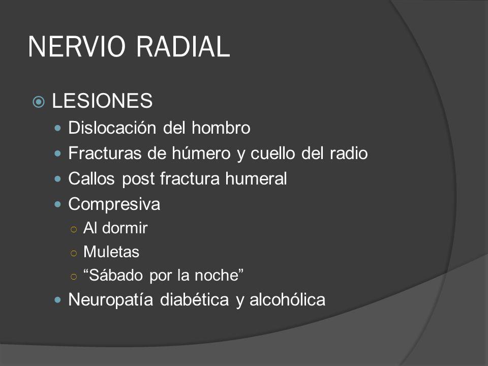 NERVIO RADIAL LESIONES Dislocación del hombro